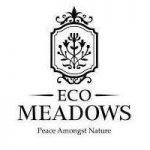 Eco Meadow